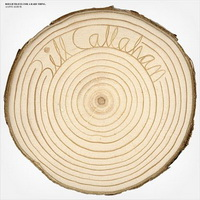 bill_callahan_-_rough_travel_for_a_rare_thing2.jpg